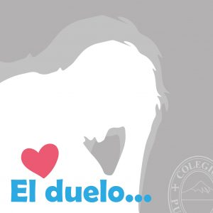 duelo-23